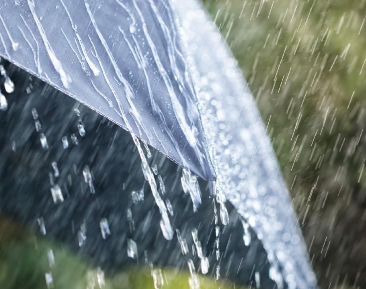 Regn-Temadag