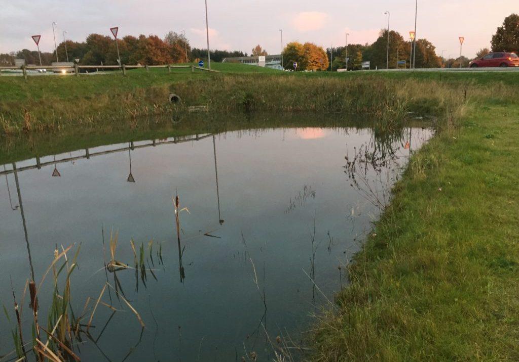 Våde regnvandsbassiner – er det løsningen?